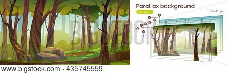 Summer Forest With Green Trees, Grass And Stone. Vector Parallax Background For 2d Game With Woods L