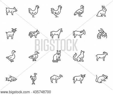 Farm Animals Line Icons Set. Linear Style Symbols Collection, Outline Signs Pack. Domestic Animals A