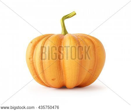 Ripe pumpkin vegetable with tail. Autumn crop for Thanksgiving Day and Halloween holiday, 3d rendering Isolated on white background. 3d illustration