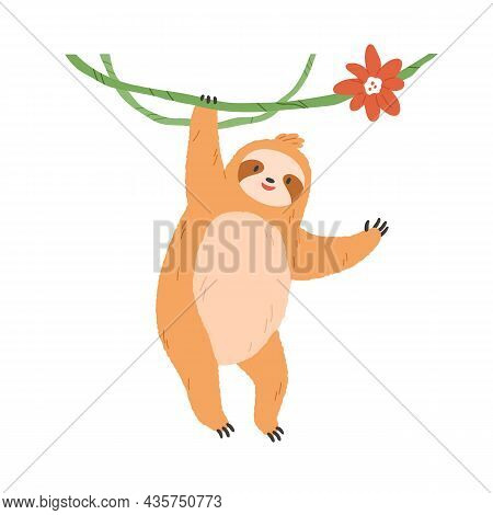 Cute Sloth Hanging On Liana Branch. Happy Lazy Animal Waving With Paw. Funny Slow Character Smiling
