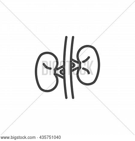 Human Kidney Line Icon. Linear Style Sign For Mobile Concept And Web Design. Kidney Organ Outline Ve