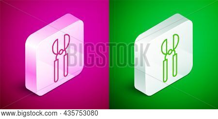 Isometric Line Gardening Handmade Scissors For Trimming Icon Isolated On Pink And Green Background.