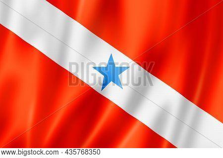 Para State Flag, Brazil Waving Banner Collection. 3d Illustration