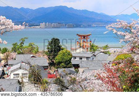 Aerial view on famous Floating Torii gate, Itsukushima Shrine, Miyajima island, Hiroshima prefecture, Japan. UNESCO world heritage site. Sakura blossom season
