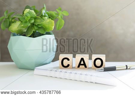 Cao, Central Applications Office - Acronym On Wooden Cubes On With A Flower In A Pot And A Notebook