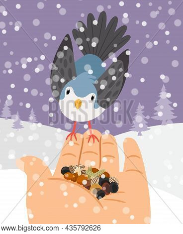 Winter Birds Feeding. Hand Bird Feed Vector Illustration, Grains Feeds Food On Palm Winters Animals