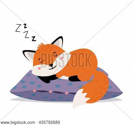 Sleeping Fox. Orange Cute Tod Sweet Dreams On Soft Pillow, Smiling Foxy Face Autumn Babies Sleeps Ca