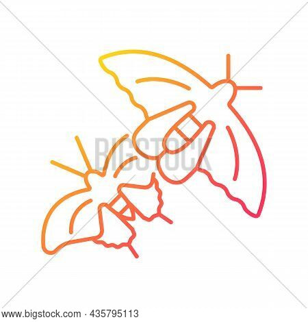 Butterflies Of Singapore Gradient Linear Vector Icon. National Insects. Asian Butterfly Species. Nat
