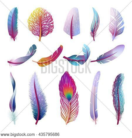 Isolated Feather Collection. Colorful Fantasy Feathers, Peacock Bird Tail Element. Isolated Festive
