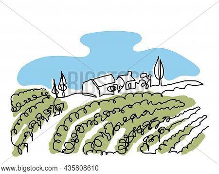 Vineyard Field Minimalist Color Design For Wine Label.simple Vector Sketch, Doodle Illustration. Vin