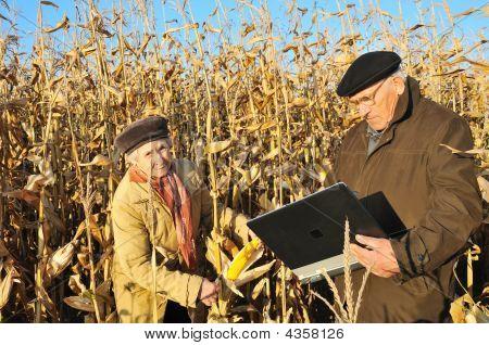 Serious Farmers In Field