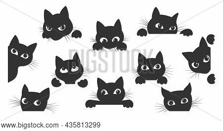 Black Kitty Look. Cat Spy Animal Cartoon Vector Illustration For Creative Images And Tattoo, Funy Pl