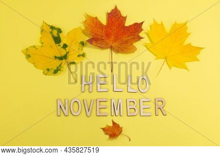 Hello November - Text And Autumn Leaves On A Pastel Background. Autumn Background.