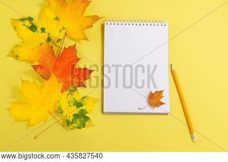 Blank Notebook And Pen With Autumn Leaves On Yellow Background.