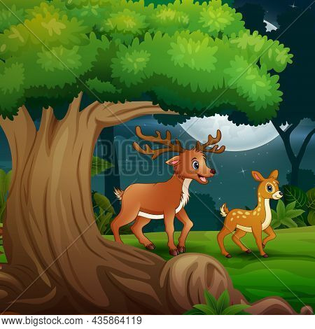 A Deer With Her Cub In The Forest At Night