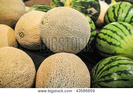 melons on display shelf at the supremarket poster