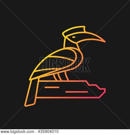Hornbill Gradient Vector Icon For Dark Theme. Singapore National Bird. Exotic Animal. Omnivorous Cre