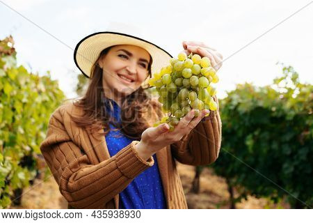 Winemaker Smilling Adult Woman With Hat Holding A Bunch Of White Grape. Female Farmer Looking At Cam