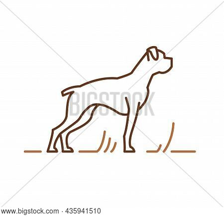 Boxer Thoroughbred Dogs Icon, Pedigree Friendly Pets Sign. Contour Vector Illustration For Cynology
