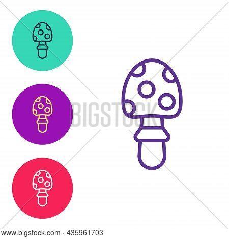 Set Line Amanita Muscaria Or Fly Agaric Hallucinogenic Toadstool Mushroom Icon Isolated On White Bac