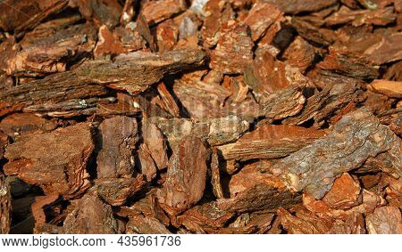 Wooden Chip Bark Pieces Which Have Been Shredded For Using As Soil In Gardening. Garden Mulch. Timbe