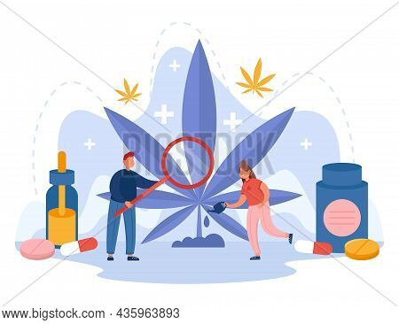 People Examining And Taking Care Of Hemp Providing It With Water And Food. Cannabis Flat Vector Illu