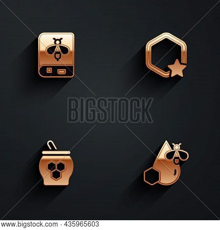 Set Book About Bee, Honeycomb, Jar Of Honey And Dipper Stick And Bee Honeycomb Icon With Long Shadow