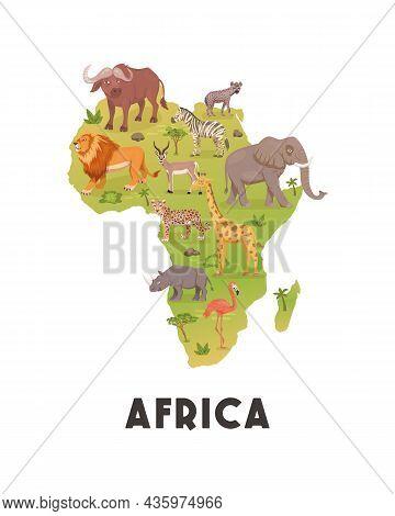 African Savannah Wild Animal Set, African Continent. Lion, Rhino, Zebra, Buffalo, Giraffe, Flamingo,