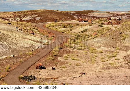 Pathway Through Scenic Landscape Of The Ancient Petrified Forest In Arizona