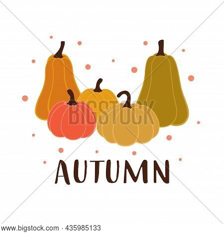 Colored Autumn Card With Cute Pumpkins And Lettering Isolated On White Background, Autumn Template,