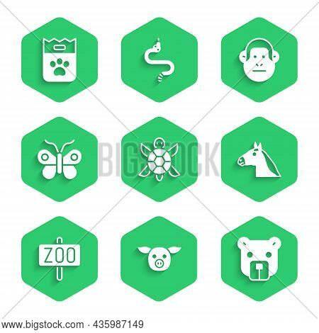Set Turtle, Pig, Bear Head, Horse, Zoo Park, Butterfly, Monkey And Bag Of Food Icon. Vector