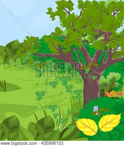 Forest With Bush, Tree Vector Illustration. Forest With Bush, Tree Vector Illustration.
