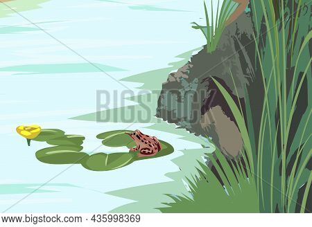 Lake Illustration With Frog Vector Illustration. Lake Illustration With Frog Vector Illustration.
