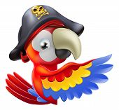 A drawing of a cartoon parrot pirate character leaning round a sign or banner and pointing with his or her wing poster