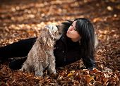 Girl and american cocker spaniel in the autumn forest poster