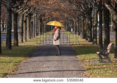 Elderly woman in the fall park with yello umbrella poster