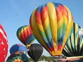hot air balloons getting ready to go up poster