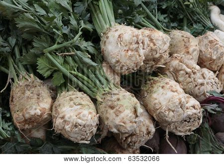 roots of celery as wholesome,tasty,spicy vegetable