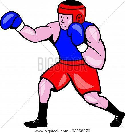 Amateur Boxer Boxing Cartoon