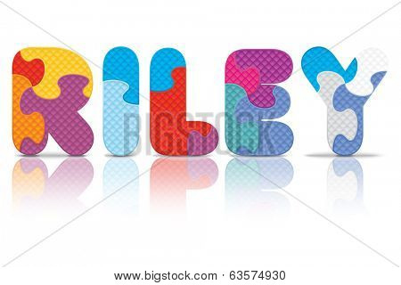 RILEY written with alphabet puzzle - vector illustration