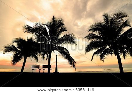 Silhouette Of Bench And Coconut Tree Near The Beach When Sun Rising