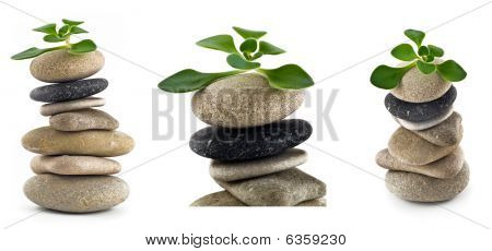 Birth of life - collection of balanced stone towers with plants on the top over white poster