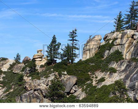 Trees and granite rocks in Yosemite National Park