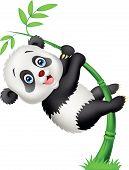 Vector illustration of Cute panda cartoon climbing bamboo tree poster