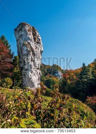Limestone rock formation called Maczuga Herkulesa, Pieskowa Skala in the area of Krakow-Czestochowa Upland, Poland
