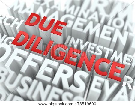 Due Diligence - Red Word on White Wordcloud Concept. poster