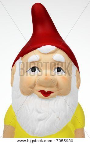 single garden gnome