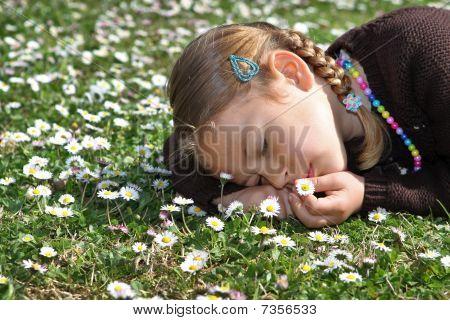 Girl sleeping in field of daisies