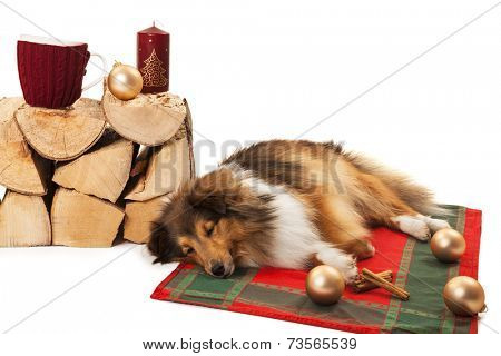 Dog sleeping near the knitted cup and christmas ornaments on stack of firewood poster