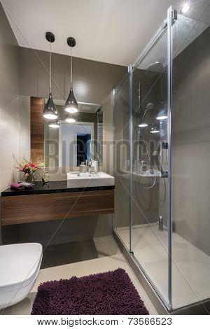 Modern Luxury Bathroom With Shower